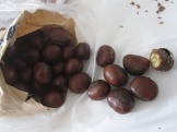 fresh roasted chestnuts