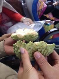 budda's head fruit in Taidong